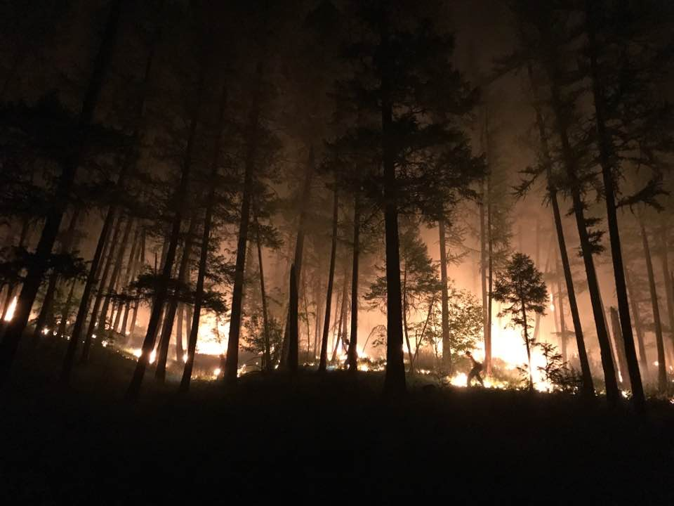 Now Is The Time To FireWise Your Property