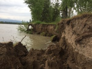 Flathead River Flooding and Erosion
