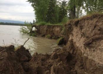 Flathead River Flooding and Erosion