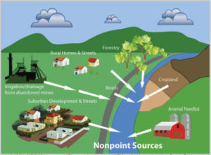 Non Point Source Pollution Flathead Conservation District
