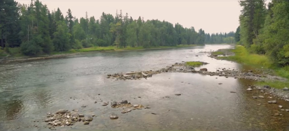 New River Stewardship Video